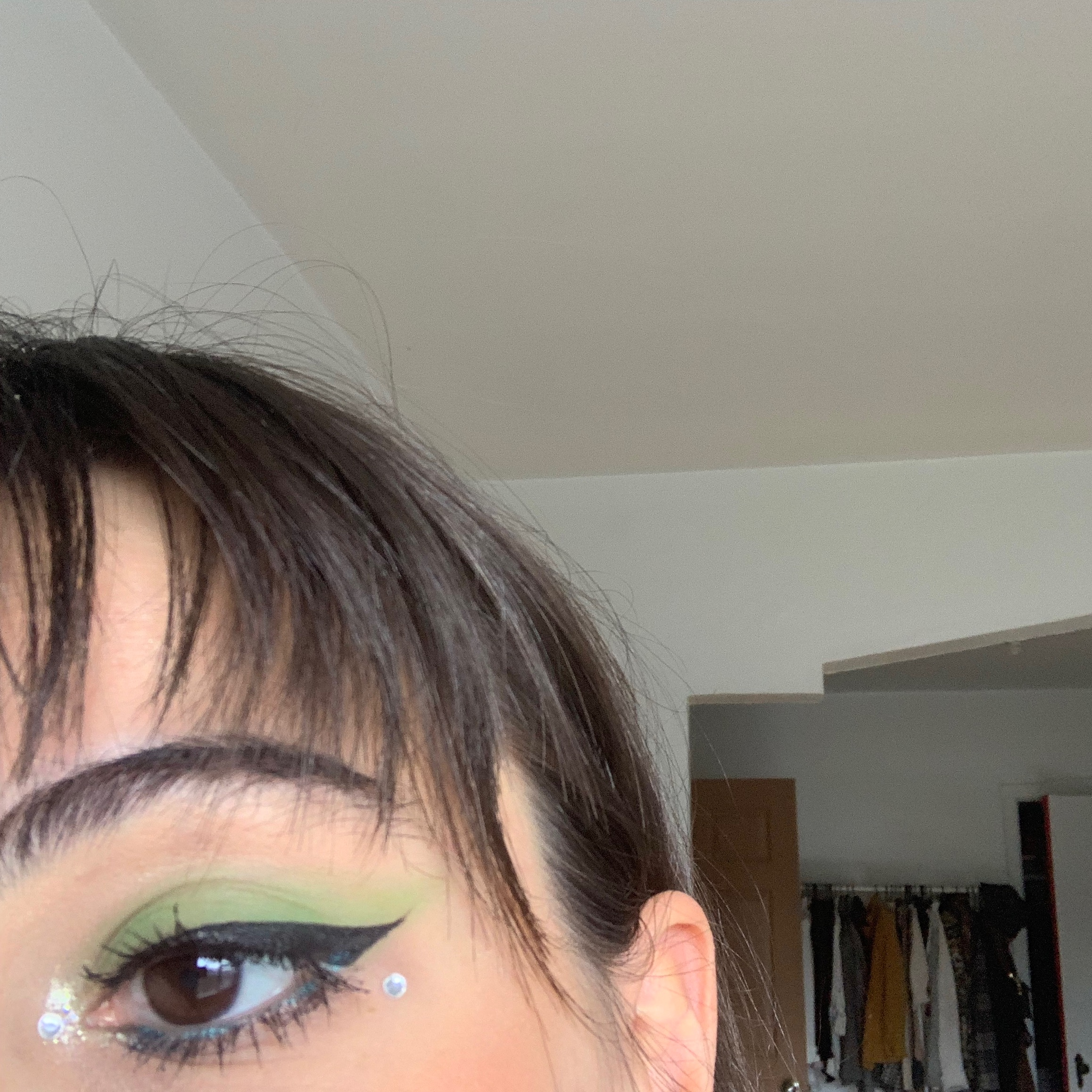 green festival makeup look 2.jpg
